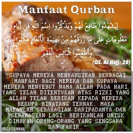 Image result for kelebihan ibadah qurban